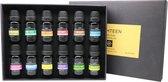 Premium Etherische oliën voor Diffuser - Geschikt voor Geurverspreider ,Massage Olie, Rituals, Haarverzorging en Badolie - In Luxe Opbergdoos