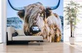 Fotobehang Dieren - uit 1 stuk, Naadloos Fotobehang - 200 x 265 cm (bxh) - op elk formaat leverbaar
