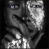 Luxe Wanddecoratie - Foto - Plexiglas & Dibond - UV Filter - Aluminium Ophangsysteem - Noir Silver l