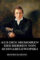 Aus den Memoiren des Herrn von Schnabelewopski
