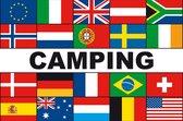 Meerlandenvlag camping - 100 x 150 cm - Glanspolyester