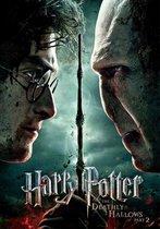 Harry Potter En De Relieken Van De Dood: Deel 2 (Import)