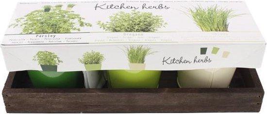 keukenkruiden/tuinkruiden potten setje - peterselie - oregano - bieslook - metalen potjes - kruiden