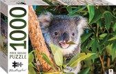 Puzzel Koala 1000 stukjes