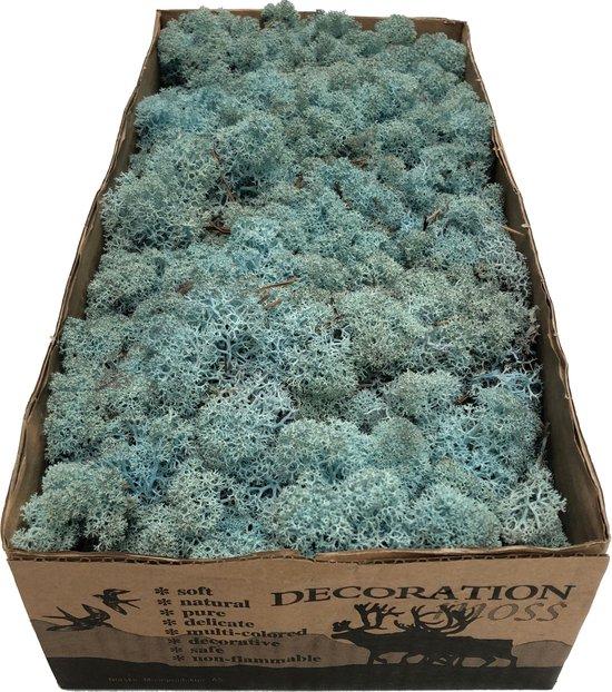 Mos IJslands Rendiermos Caribbean Blue per 500 gram voor decoraties, mosschilderijen en kerststukjes
