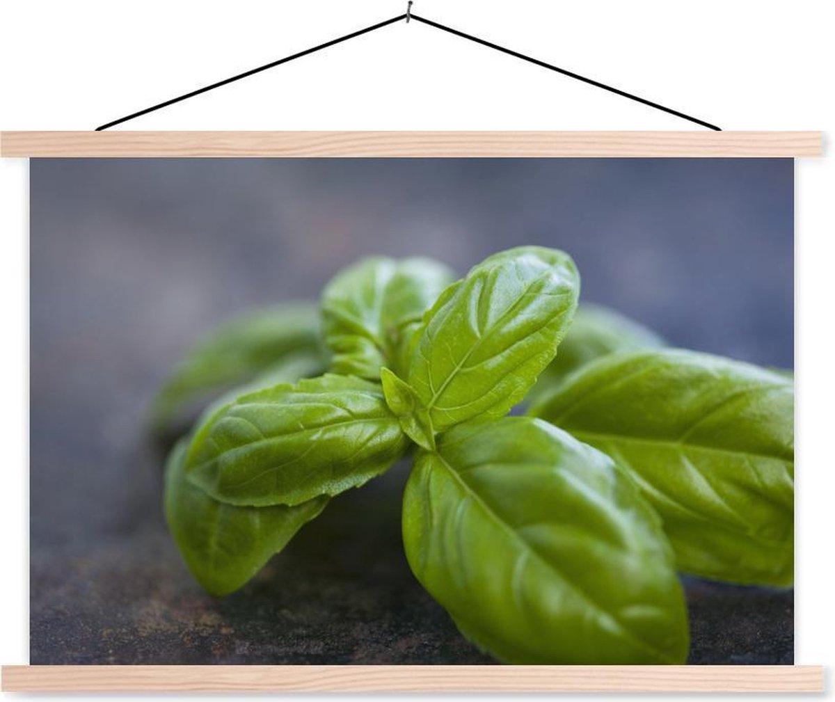 Close-up van basilicumbladeren schoolplaat platte latten blank 150x100 cm - Foto print op textielposter (wanddecoratie woonkamer/slaapkamer)