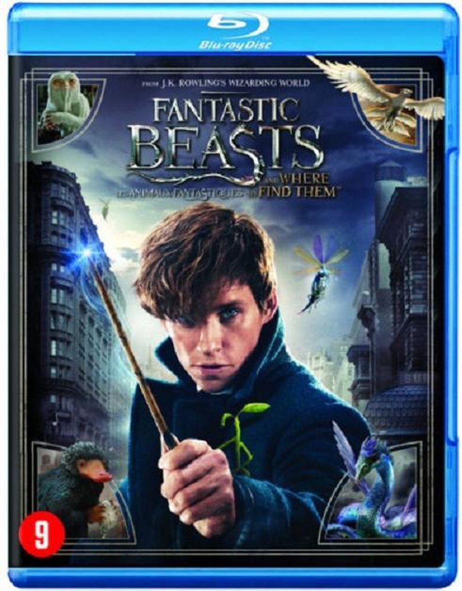 Fantastic Beasts and Where to Find Them (Blu-ray) - Film