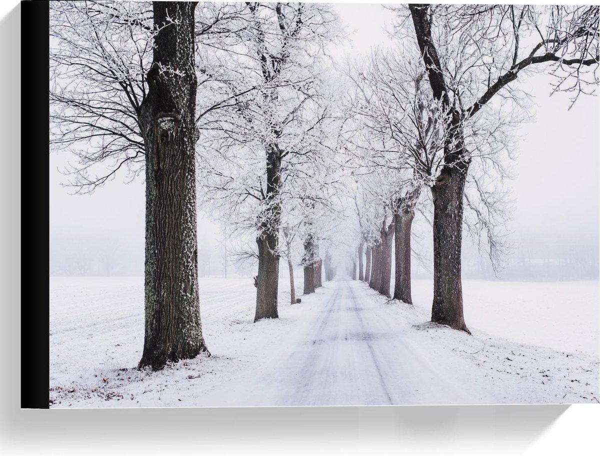 Canvas  - Winters pad met Bomen - 40x30cm Foto op Canvas Schilderij (Wanddecoratie op Canvas)