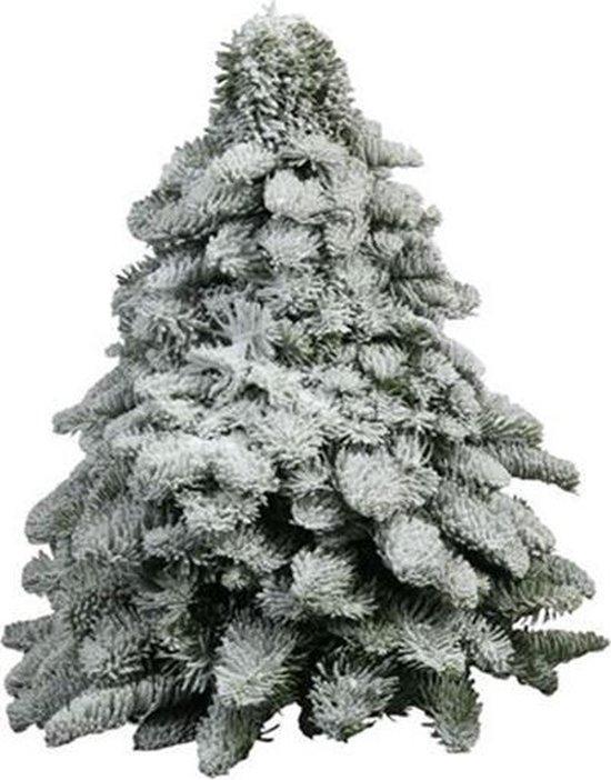 Kerstboom Nobilis groen met sneeuw 40 cm