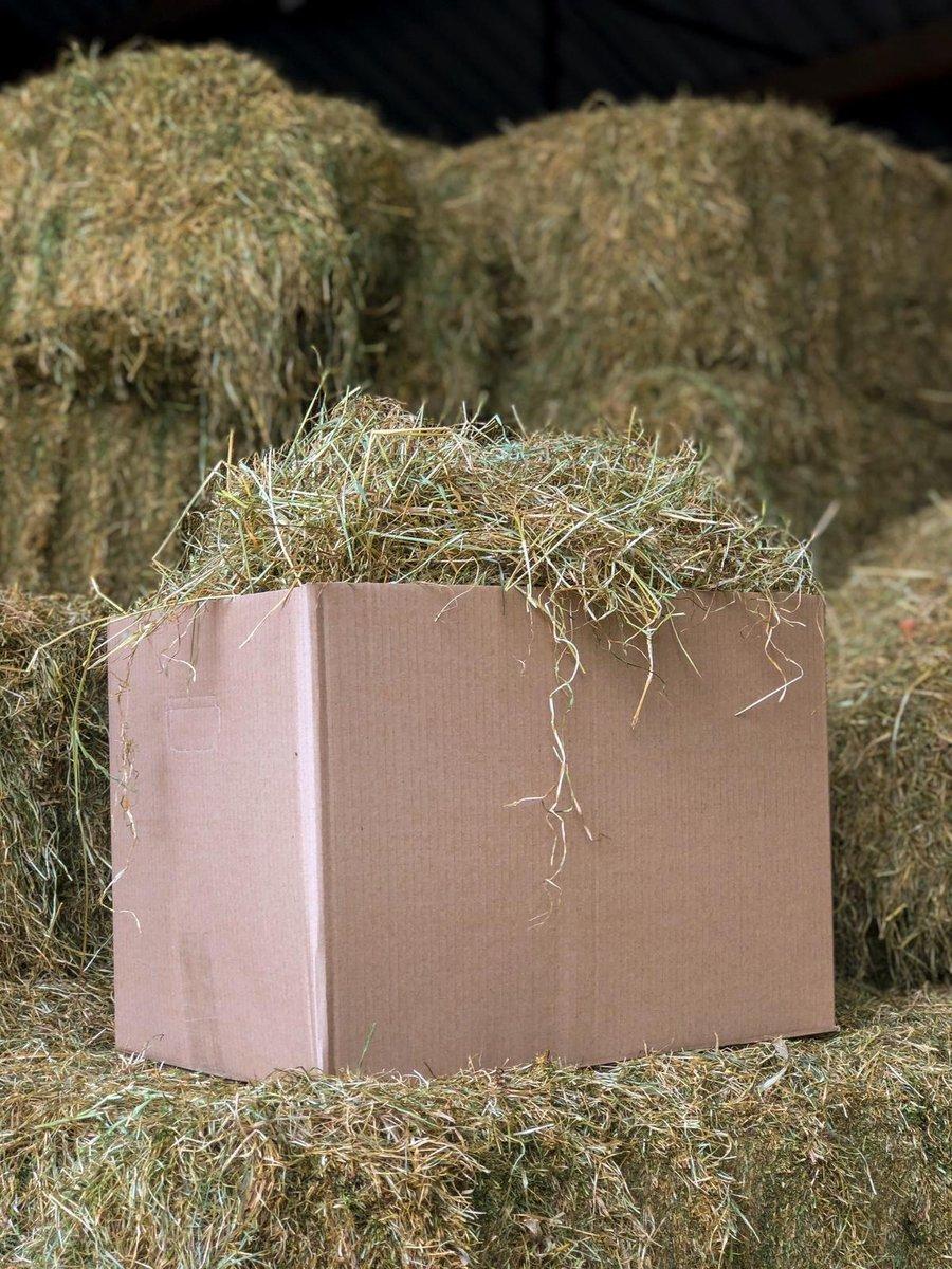 Hooi - 4 kg - vers - hooi direct van de boerderij - konijnenvoer - knaagdieren - goede kwaliteit
