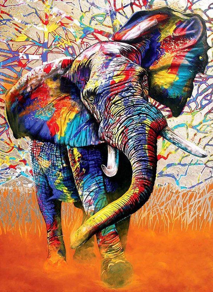 Schilderen op nummer |Inclusief | Frame | 30 x 40 cm | kleurrijke olifant | Verven op nummer | Canvas | DIY | Cadeau | Familie | Paint by number | Kwasten | Verf | Hobby | Dieren | Seizoen
