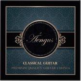 Áengus Gitaarsnaren voor Klassieke en Spaanse Gitaar – Nylon Coated Silver wound - set .028 tot .043
