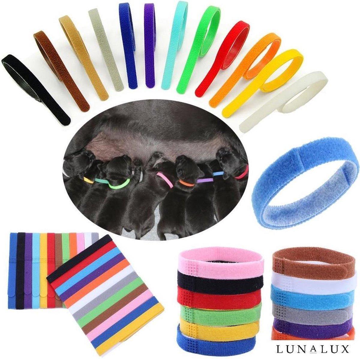 Puppy halsbandjes - Puppy ID - Puppy collars - 12 stuks - bandjes voor puppy's - onderscheid bandjes