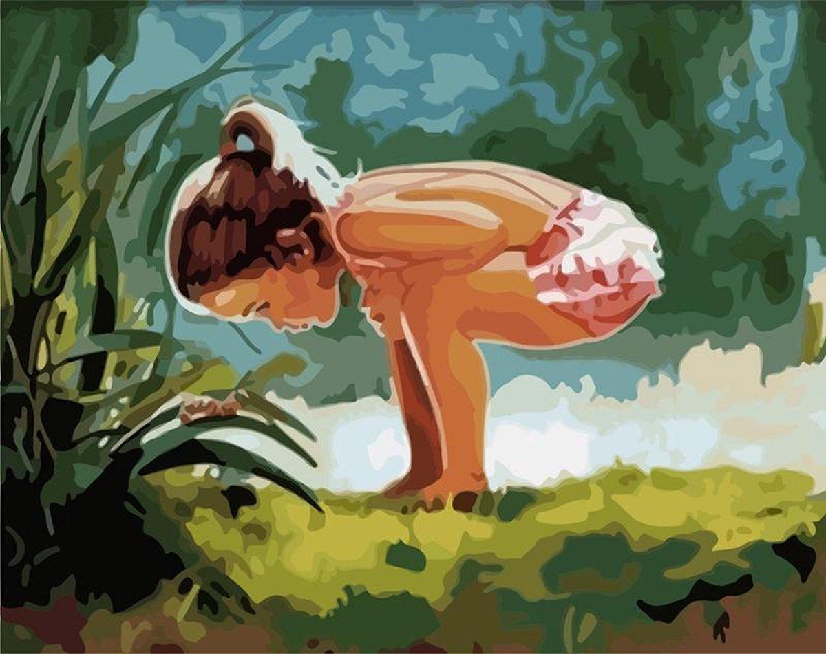Schilderen Op Nummer Volwassenen - Zoekend - Met Frame - 40x50 cm