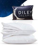 Diley Dreams® Dons hoofdkussen - kussens slaapkamer - voor hoofd, nek en schouders - tegen nekklachten - Donskussen 50x70
