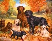 TOPMO - Groepje honden- honden portret in het bos - 40X50CM- Diamond painting pakket - HQ Diamond Painting - VOLLEDIG dekkend - Diamant Schilderen - voor Volwassenen – ROND- Diamond DOTZ