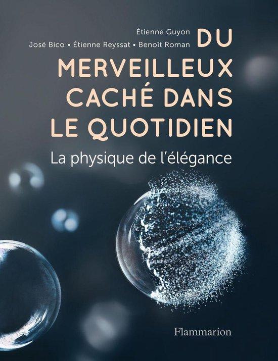 Boek cover Du merveilleux caché dans le quotidien. La physique de lélégance van Collectif (Onbekend)