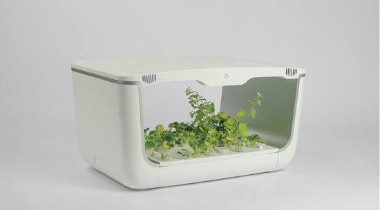VegeBOX - Table - hydrocultuur tafelmodel kweek bak met full scpectrum LED verlichting
