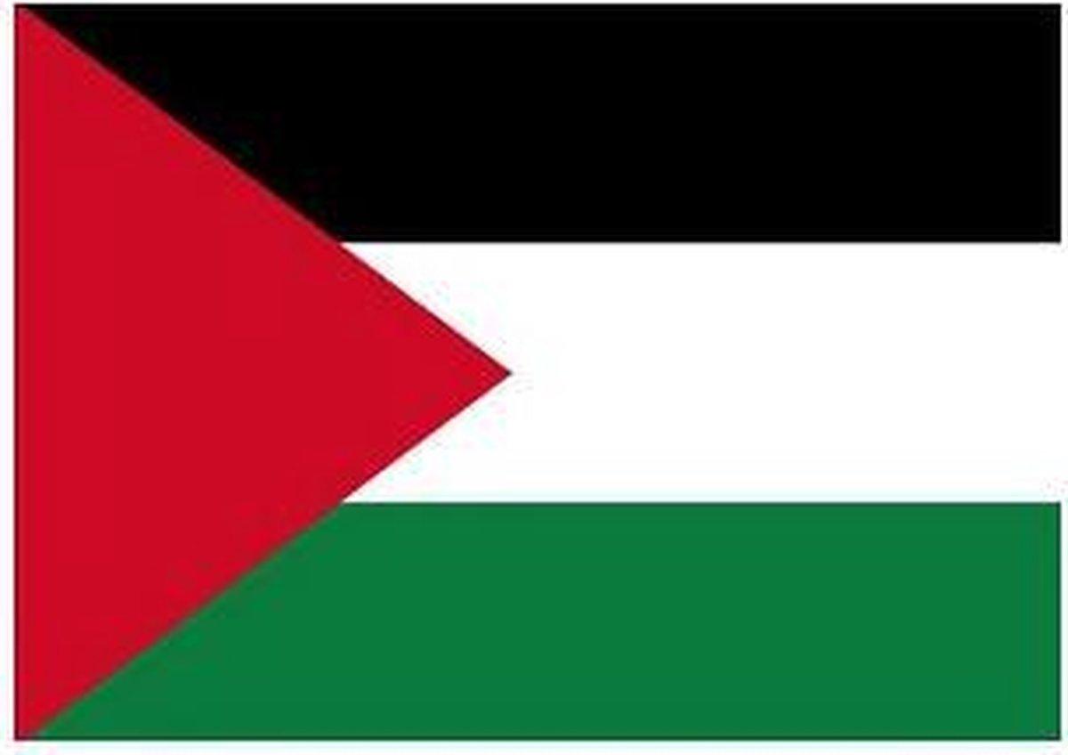 Vlag Palestina stickers - Shoppartners