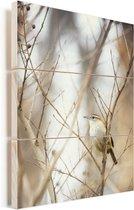 Een carolina winterkoning op een tak Vurenhout met planken 120x160 cm - Foto print op Hout (Wanddecoratie) XXL / Groot formaat!