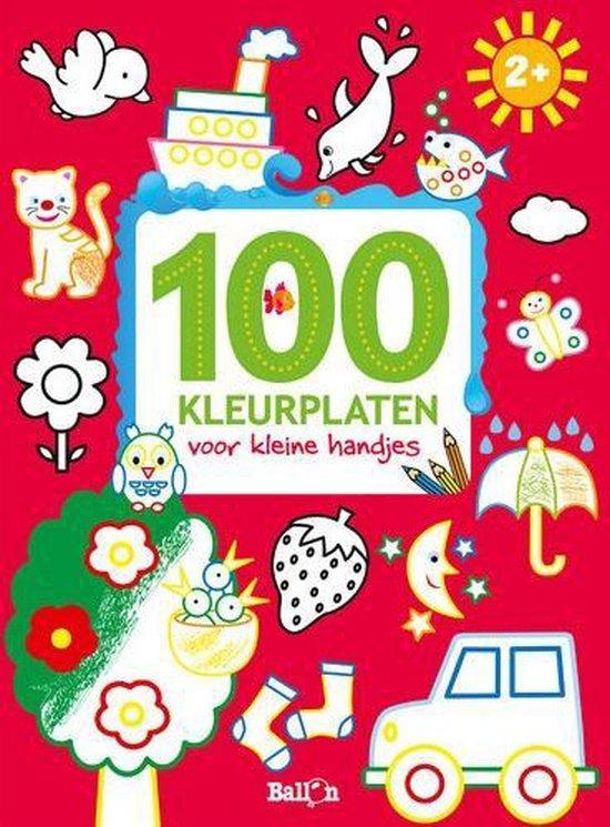 100 kleurplaten voor kleine handjes - Diverse auteurs pdf epub