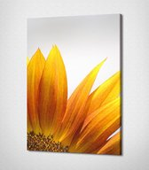 Yellow Flower Canvas   40x30 cm