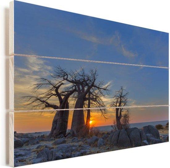 Zonsopgang op Kubu Island bij de Afrikaanse baobabs Vurenhout met planken 90x60 cm - Foto print op Hout (Wanddecoratie)