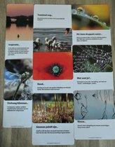 """Inspiratiekaarten - 52 natuurfoto- inzichtkaarten - """"Verbindingen via de natuur"""""""