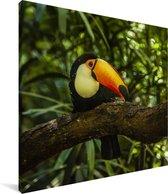 Reuzentoekan op een tak Canvas 90x90 cm - Foto print op Canvas schilderij (Wanddecoratie woonkamer / slaapkamer)