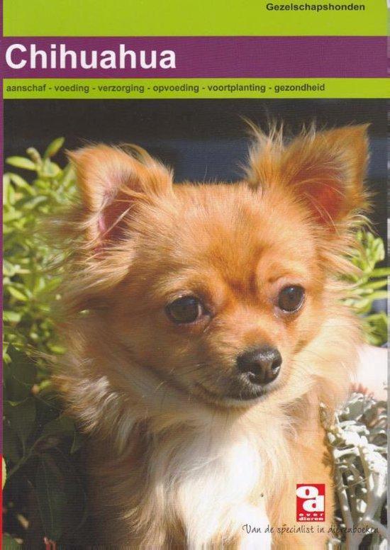 Over Dieren 136 - Chihuahua - Redactie Over Dieren |