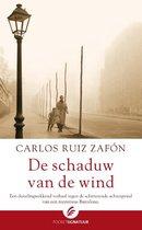 Het Kerkhof der Vergeten Boeken 1 - De schaduw van de wind