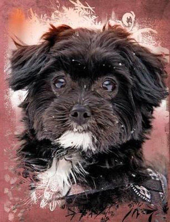 Cute Black Maltese Dog Composition Notebook, Graph Paper