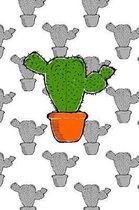 Cactus In A Planter