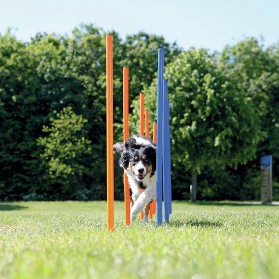 Trixie Dog Activity Agility Slalom - Blauw/Oranje - 115 x 3 cm - 12 St