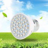 ProLED Groeilamp LED - 1 stuk - E27 fitting - 72 lichtpunten - LED Groeilamp - Bevordert de groei van (jonge) plantjes - Bloeilamp - Kweeklamp - Kweekbak - Kweektunnel -  Groeilicht - Kweekkas - Kweekbak - Grow Light - LED lampen