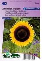 Sluis Garden - Zonnebloem Hoge gele