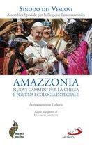 Amazzonia: nuovi cammini per la chiesa e per una ecologia integrale