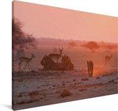 Vele wilde dieren in het Nationaal park Makgadikgadi Pans Canvas 140x90 cm - Foto print op Canvas schilderij (Wanddecoratie woonkamer / slaapkamer)