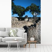 Fotobehang vinyl - Bomen en helder blauwe lucht bij de ruïnes van Groot-Zimbabwe breedte 235 cm x hoogte 360 cm - Foto print op behang (in 7 formaten beschikbaar)