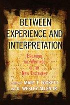 Between Experience and Interpretation