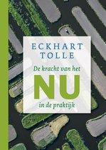 Boek cover De kracht van het nu in de praktijk van Eckhart Tolle (Onbekend)
