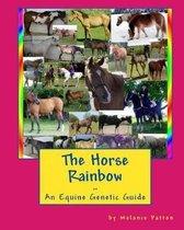 The Horse Rainbow