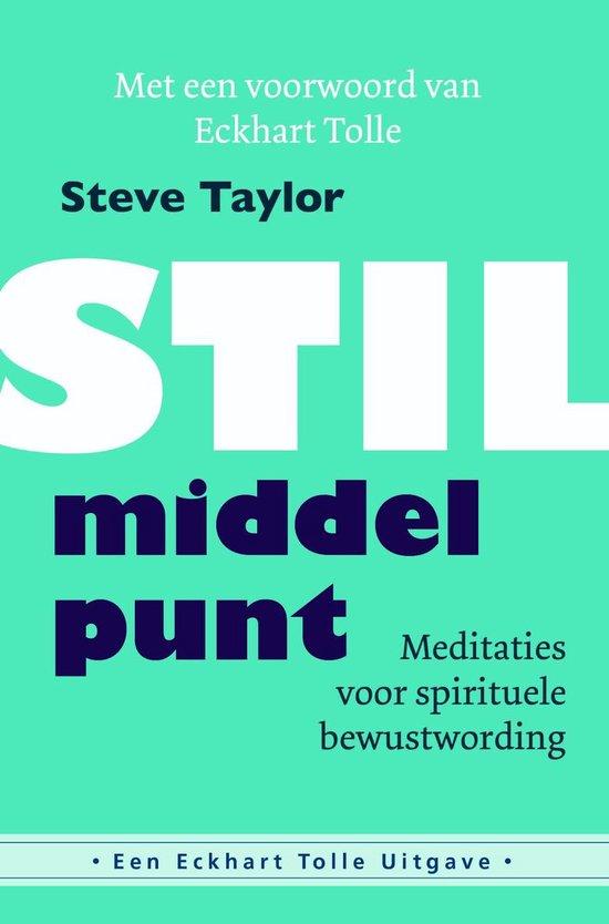 Stil middelpunt - Steve Taylor |