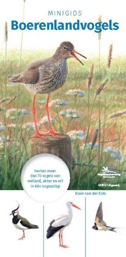 Minigids - Minigids Boerenlandvogels - Onbekend  
