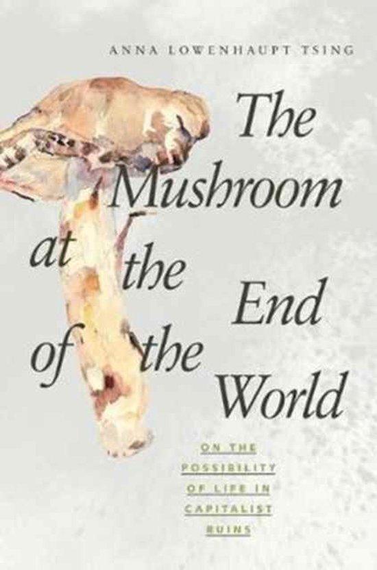 Boek cover The Mushroom at the End of the World van Anna Lowenhaupt Tsing (Paperback)