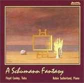 A Schumann Fantasy