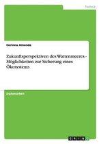 Zukunftsperspektiven des Wattenmeeres - Moeglichkeiten zur Sicherung eines OEkosystems