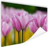 Tulpenbloesems Poster 90x60 cm - Foto print op Poster (wanddecoratie woonkamer / slaapkamer) / Bloemen Poster