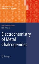 Electrochemistry of Metal Chalcogenides