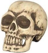 Schedel/doodshoofd 32 cm Halloween decoratie - Horror themafeest versiering